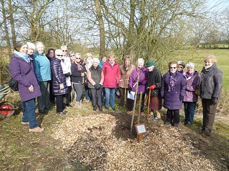 Long Buckby WI tree planting