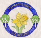 Pembrokeshire Federation badge
