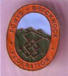 Powys Brecknock Federation badge